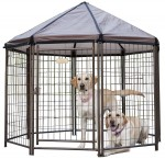 23200_The_Original_Pet_Gazebo_NoBkgrd_1725x1675