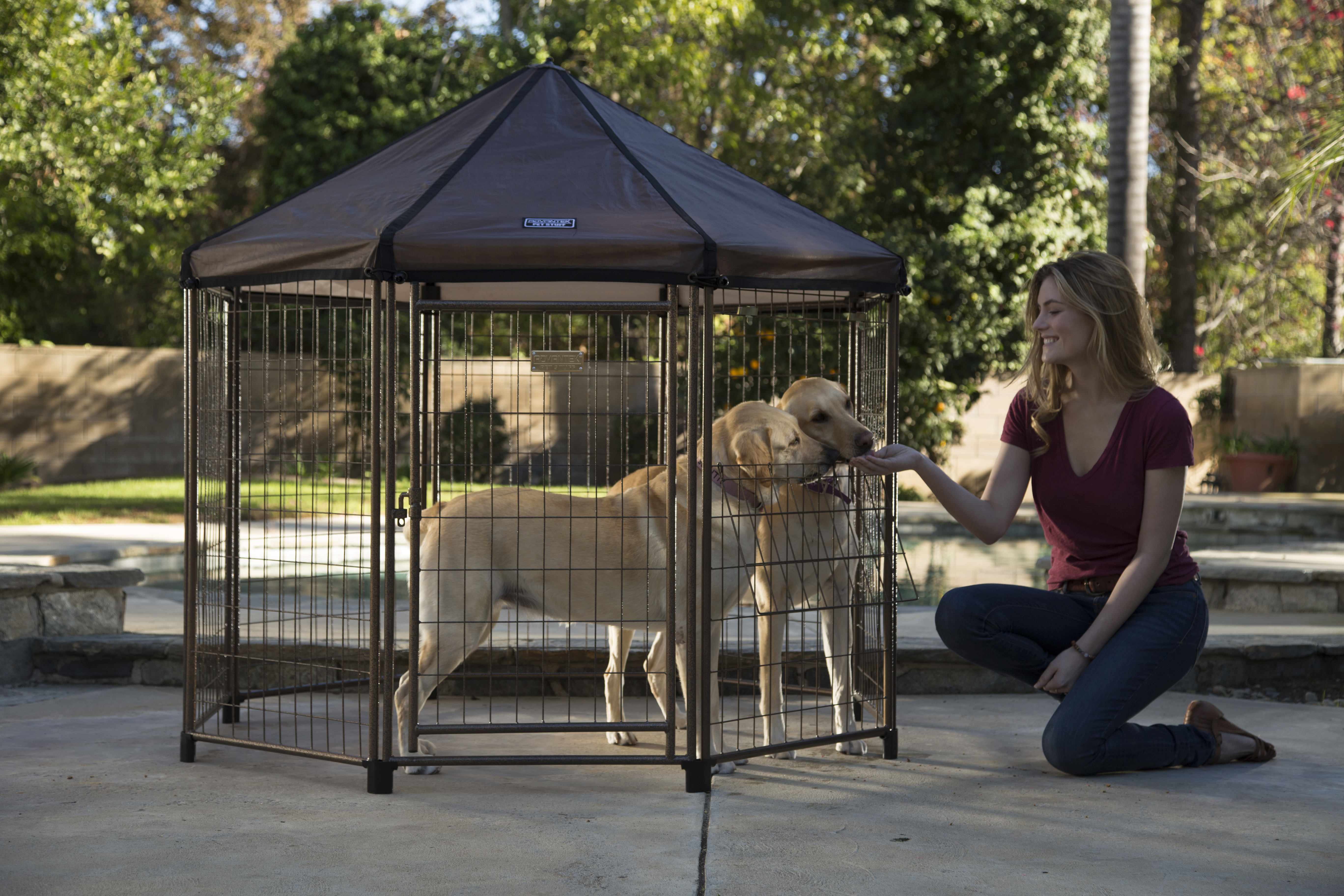 lovely backyard dog pens